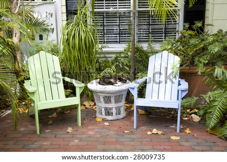 Pair of Adirondack chairs with a sleeping cat