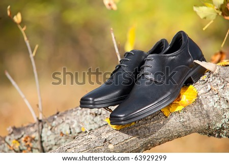 Pair of black male shoes in the autumn park
