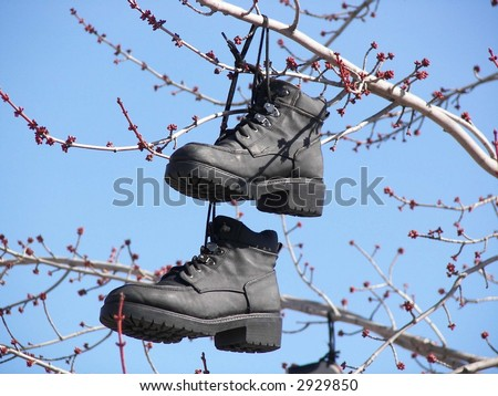 pair of black work boots hanging in a tree