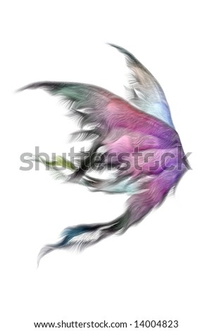 Pair of fluffy fairy wings isolated on white - stock photo