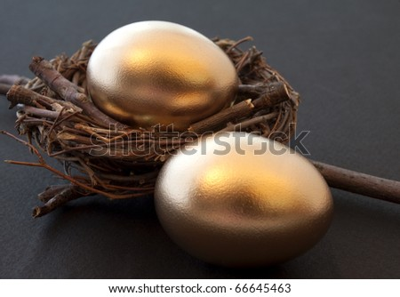Pair of golden eggs in a sturdy nest