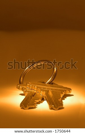 pair of house keys under spotlight