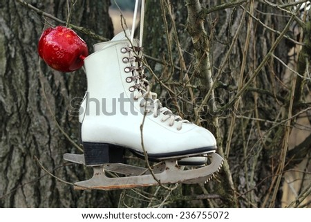 Pair of White Ice Skates and red apple hanging on the tree/Pair of White Ice Skates hanging on the tree