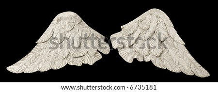 Pair of white wings over black