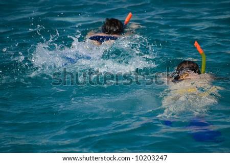 Pair snorkeling in red sea