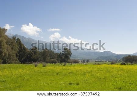 paisaje de campos agr?colas en zona central de Chile