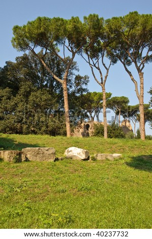 Palatine - ruins of ancient Rome's site