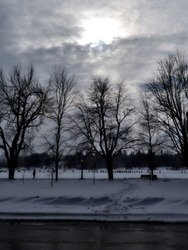 Pale late afternoon wintry sun showing through the clouds above some leafless trees at the edge of Dow's Lake, Ottawa, Ontario, Canada.