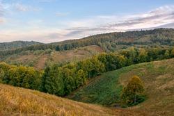 Pale of light. Morning on mountain hills. Holbav