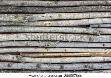 Paling made of many tree trunks of variety wood type. Unusual palisade consisting of trunks and branches of different sort of trees natural background vivid colors