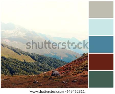 Pallete of colors. Autumn mountain landscape. Harmonious blend of colors. Color mixing.