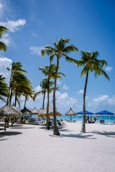 Palm Beach Aruba Caribbean, white long sandy beach with palm trees at Aruba Antilles