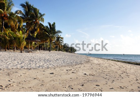 Palm beach at the southern shore of Mauritius Island