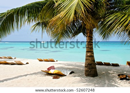 Palm beach in the Caribbean - stock photo