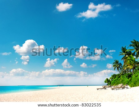 palm beach. tropical island landscape