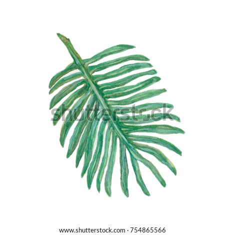 Palm leaf tropical greenery. - Shutterstock ID 754865566