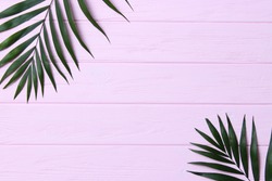 palm leaves on a wooden background with free space for text. a draft for a design. minimalism, creativity. flatlay