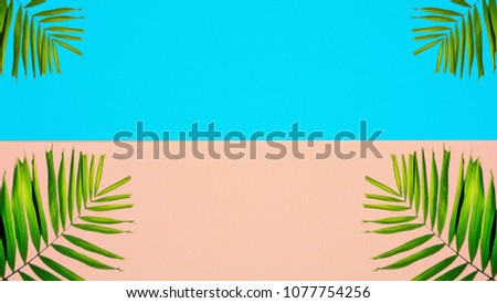 palm leaves on pink and blue background #1077754256