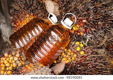 Palm oil, Today it is widely acknowledged as a versatile and nutritious vegetable oil, trans fat free with a rich content of vitamins and antioxidants. Palm oil is used in billions of products�