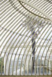 Palm seen through botanic garden glass wall