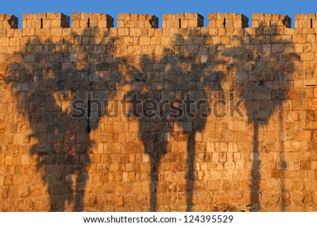 Palm silhouettes on Jerusalem Old City Wall (Israel)