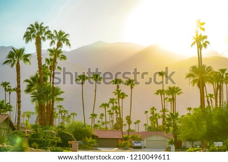 Palm Springs sunset day with mountains and palm trees. Beautiful view of Hollywood hills.