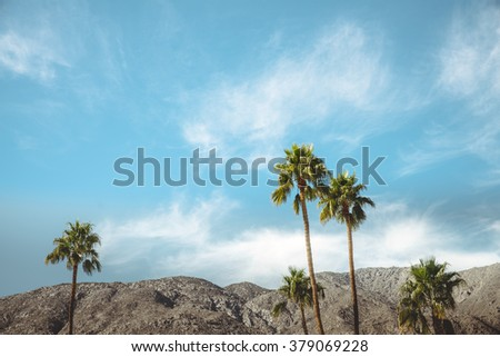 Palm Springs Vintage Movie Colony Palm Trees and Mountains \ Vintage style image meant to portray the re-birth of Palm Springs and it\'s modernism and style.