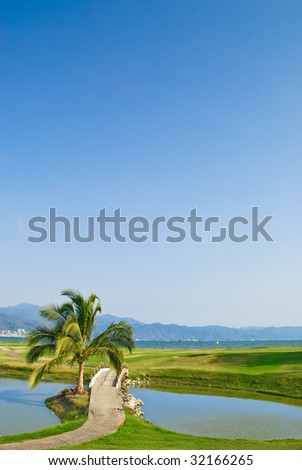 Palm tree and lake on tropical oceanfront golf course