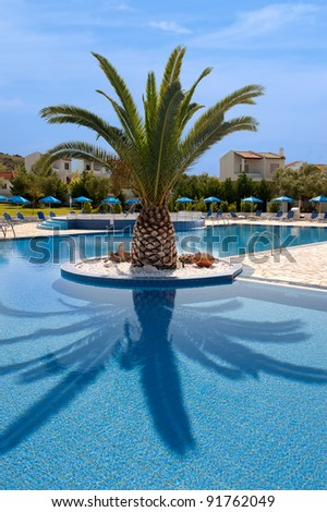 Palm Tree Beside A Quiet Swimming Pool Stock Photo 91762049 Shutterstock
