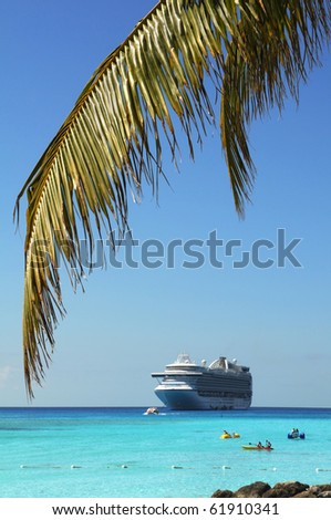 Palm tree branch and cruise ship in background - Selective focus on foreground - stock photo