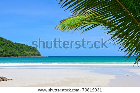 Palm tree leaves on empty dream beach and island in blue sea