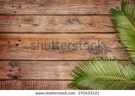 Palm tree leaves on vintage planked wood background - layout with free text space.