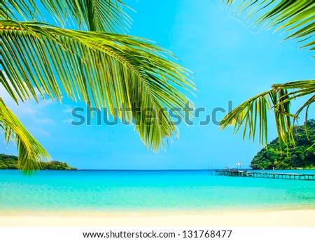 Palm tree leaves over the sand and turquoise sea