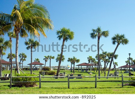 Palm tree lined park in the warm Florida sunshine. A beach access point, though not visible in image.