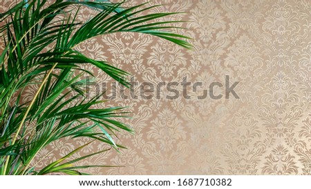 Palm tree over classy chique wallpaper Foto stock ©