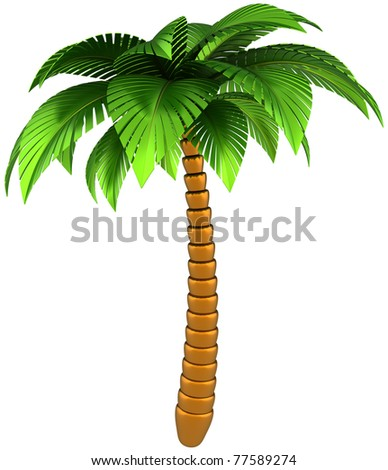 Palm tree stylized tropical nature design element. This is a detailed CG 3d three-dimensional render image. Isolated on white background