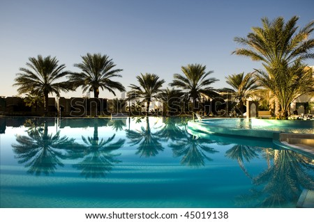 stock-photo-palm-tree-with-reflection-on-blue-swimming-pool-45019138.jpg
