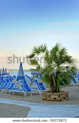 Palm tree with sunloungers and sea in the background.