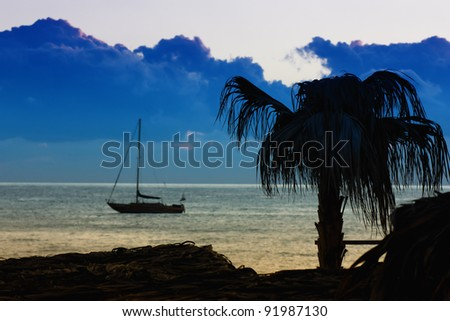 Palm tree, yacht and sea in tropical location