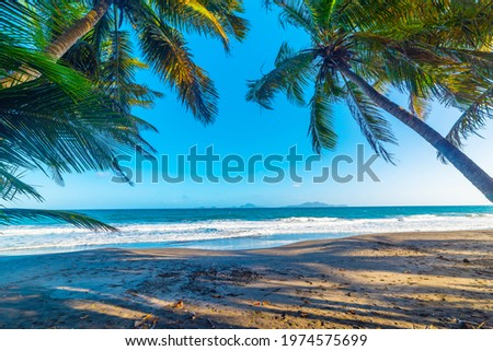 Palm trees and dark sand  in Grande Anse beach in Guadeloupe, Caribbean sea Foto stock ©