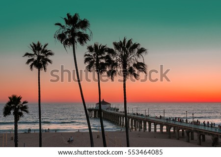 palm trees and piar at...