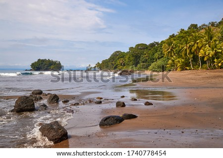Palm trees and sandy beach on the Pacific Ocean shore in Choco, Colombia, near Nuqui Foto stock ©