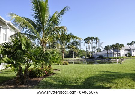 Palm trees by a lush green lawn at a resort in Naples, Florida