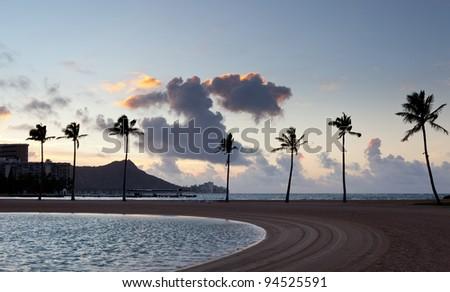 Palm trees by side of beach in Waikiki at dawn