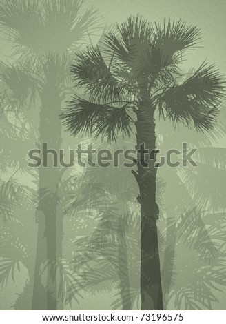 Palm trees Illustration of several palm trees at a blurred green background