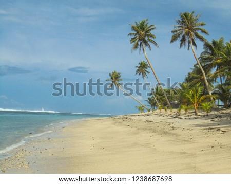 palm trees on sandy Fao fao beach on Upolu island, tropical island of Samoa, Oceania