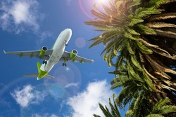 Palm trees on the background of the plane in the sky. Summer travel concept