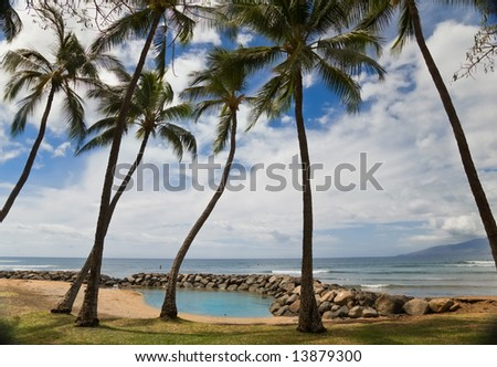 Palm trees on tropical beach with lagoon