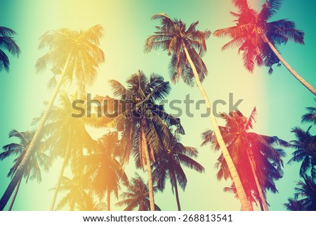 Palm trees over sky on beach, vintage stylized photo with yellow and red light leaks