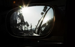 Palm trees reflecting in car mirror
